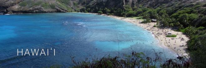 Hawaii 1 copy